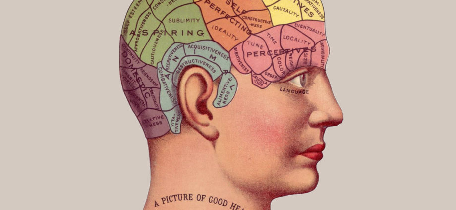 Найдены нейроны, отвечающие за сон Просон инфо фото