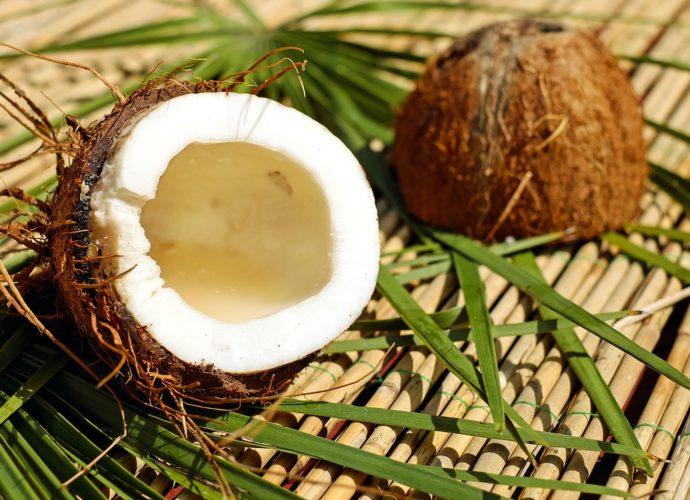 Выбираем матрас с кокосовой койрой грамотно просон инфо фото