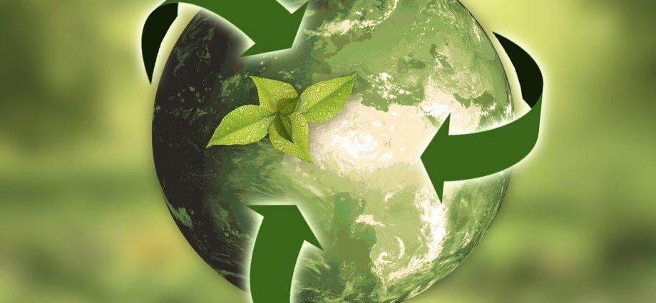 экологичные наполнители для матрасов просон инфо